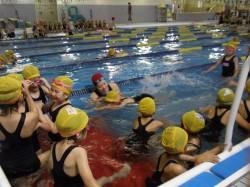 水泳教室(低学年)-010